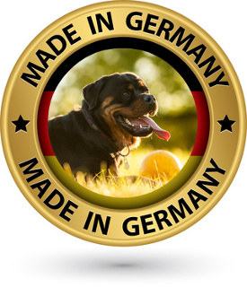 Rottweilers - a German breed