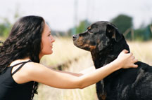 Rottweiler with woman owner